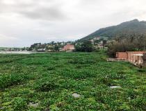 Vereador busca informações sobre situação da Represa Bortolan