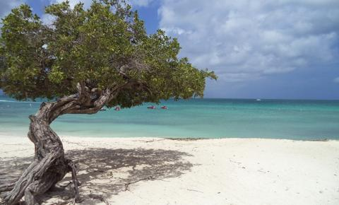Aruba - Destino para os apaixonados